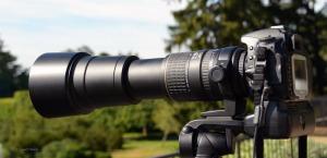 Sigma AF 170-500 lens with Nikon D80