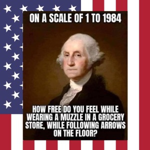 Scale of 1 to 1984 - George Washington