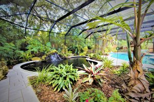 Backyard paradise - Hive Outdoor Living